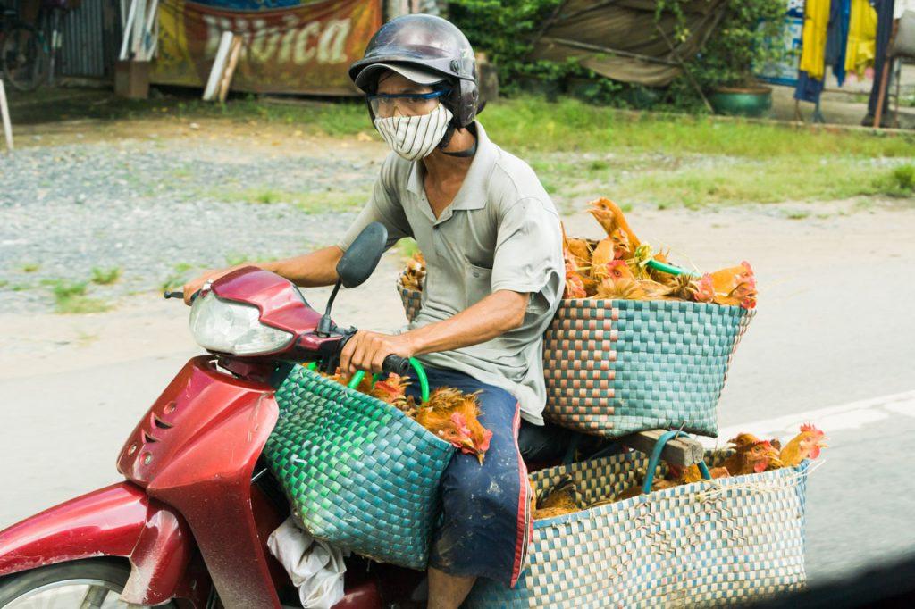 Reisevorträge - Fotografie Bernd Geller Eisenhüttenstadt - SÜDVIETNAM - Kaleidoskop. Erleben Sie die pulsierende Metrople Saigon, das Mekong-Delta und Dalat, die Stadt des ewigen Frühlings. Ein Reise- und Informationsbericht.
